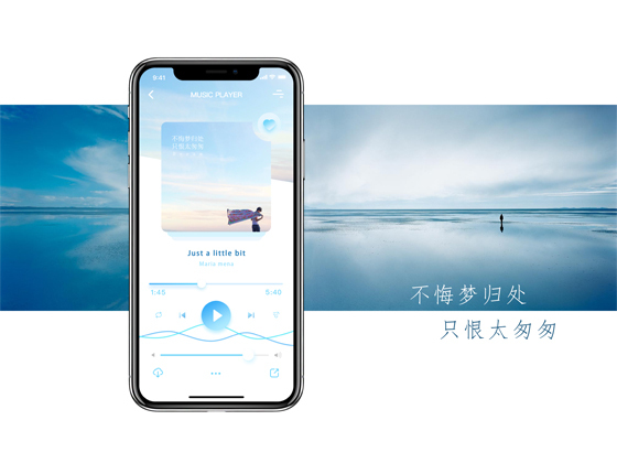 素雅iPhoneX music APP界面